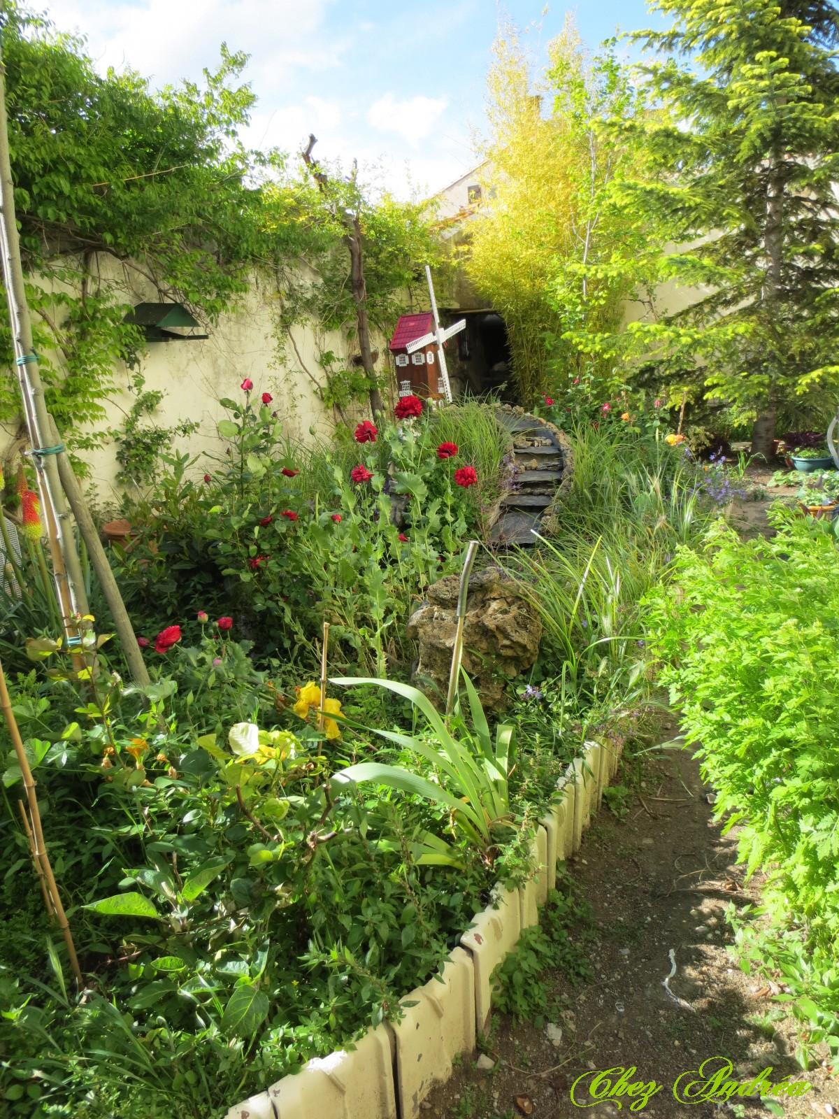 Le jardin au mois de juin for Juin au jardin