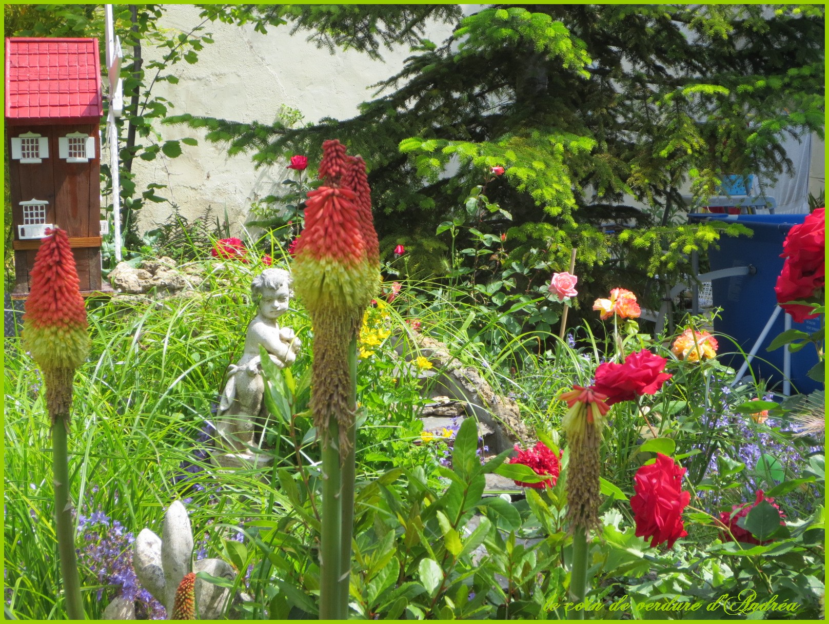 Le Jardin Au Mois De Juin
